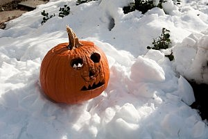 October Snowstorm Hits The Northeast