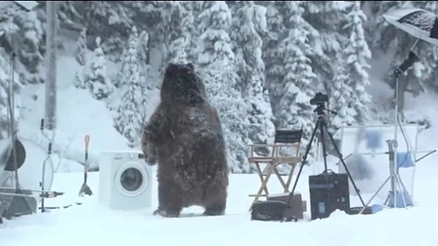 Samsung Bear