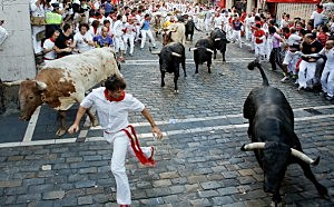 Running Of The Bulls in Spain