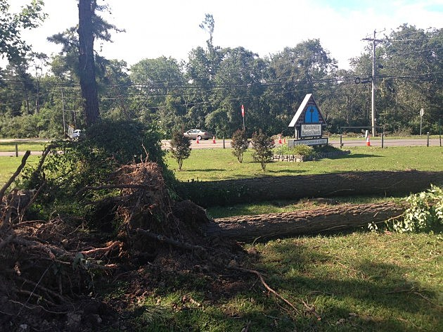 Tornado damage to the grounds of Manahawkin Baptist Church