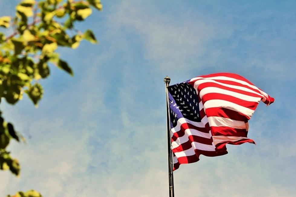 Top 5 Symbols Of Ocean Countys American Pride
